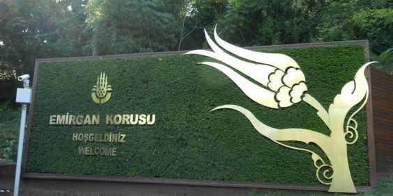 Emirgan park Istanbul, Turkey